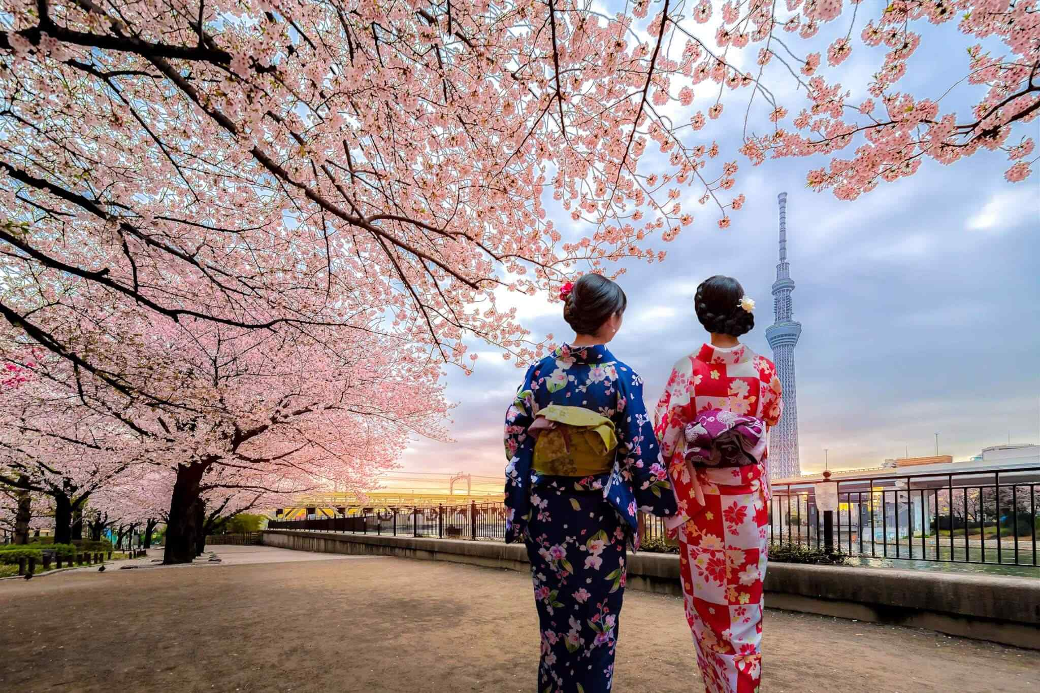 https://www.iomdirectholidays.com/wp-content/uploads/2018/09/destination-tokyo-03.jpg
